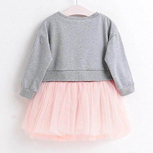 24cce81c Playwear – Cute Toddler Baby Girls Tutu Dress Long Sleeve Bunny Print  Princess Tulle Skirts Mini Dress (03 Gray, Age(5T)) Offers